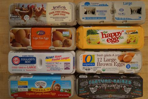 Brands To Buy by With So Many Claims What Eggs Should I Buy At The Grocery