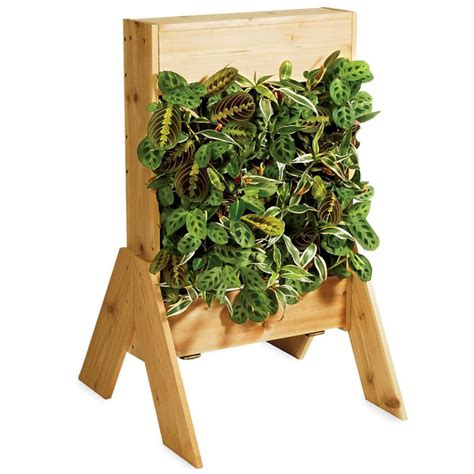 Living Wall Planters by Indoor Living Wall Planters The Green