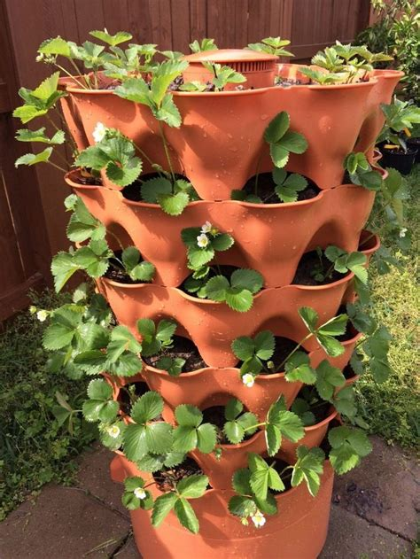Garden Tower Planter by 17 Best Images About Gardening On Gardens