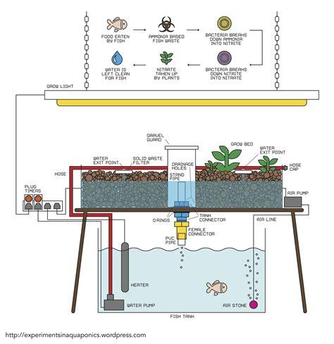 aquaponics diagram diy experiments in aquaponics