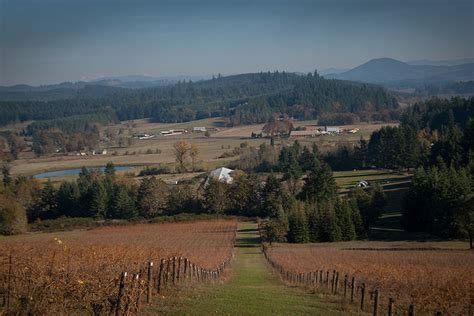 ways  visit oregon wine country vancouver blog