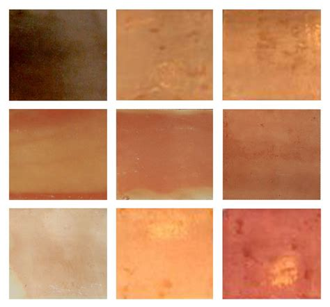 terracotta color scheme kitchen best 25 mexican tile floors ideas on pinterest spanish