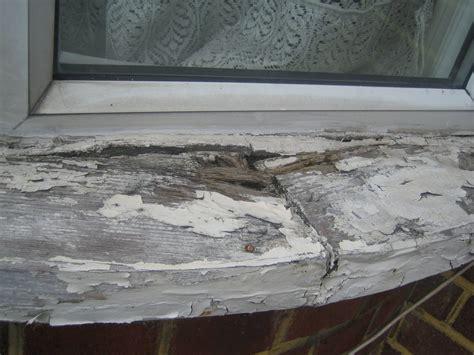 Replace Exterior Window Sill Replace An Exterior Rotten Wooden Window Sill Windows