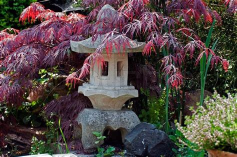 pagode garten japanische pagode im garten mit roten acer stockfoto