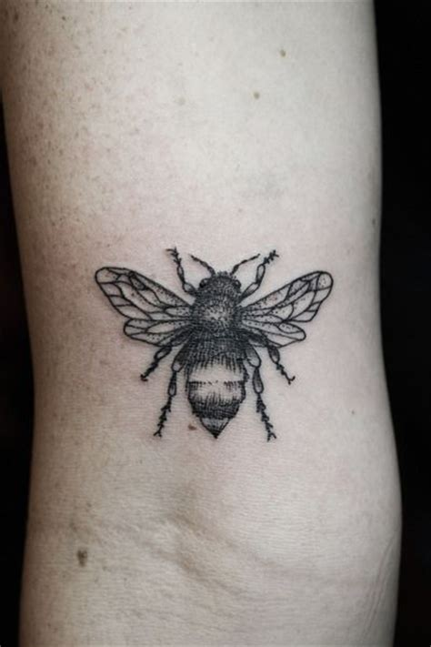 bug tattoos 246 best images about bug tattoos on