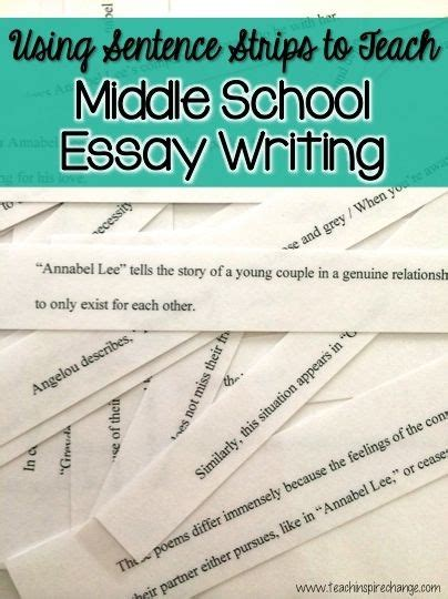 Popular Best Essay Writers Services Usa by Term Paper Helpline Walla 3 Parts Of Writing An Essay
