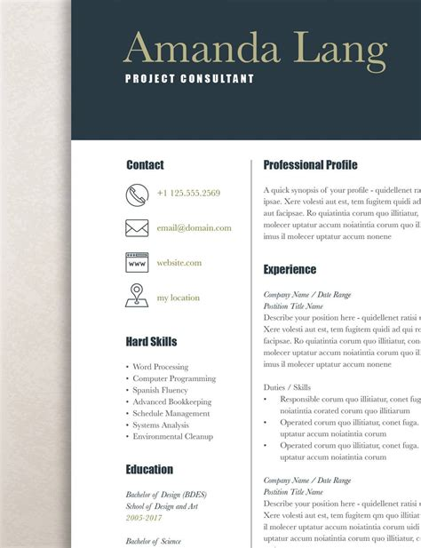 Professional Resume Template Word by Modern Resume Template Professional Resume Template Word