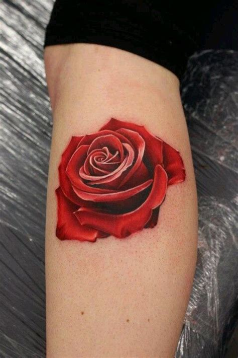 red and white rose tattoo 25 best ideas about tattoos on