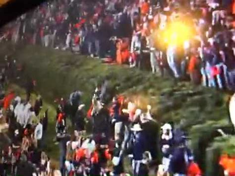 auburn fans in bushes auburn fan jumps into bushes after beating alabama in 2013