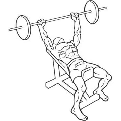 inclined bench press incline bench press gymwolf