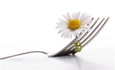 fiori in cucina usare fiori in cucina tutto l anno fileni
