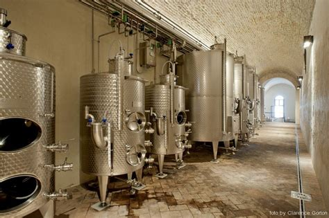 illuminazione cantina illuminazione cantina vinicola dell abbazia di praglia