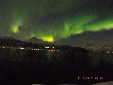 tromso northern lights tour the lights picture of northern lights tromso