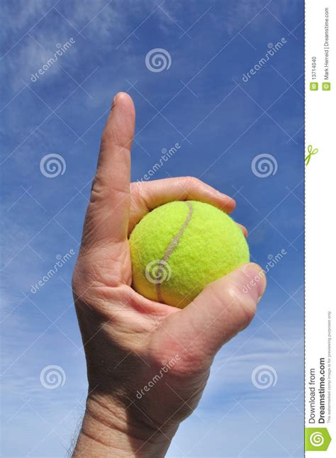 Former Tennis Non Profit Writer Mba by Tennis Number One Stock Photo Image 13714040
