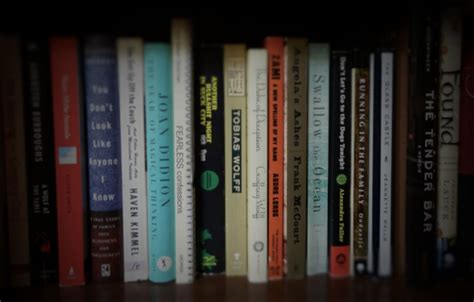 luanne castle bookshelf website header luanne castle