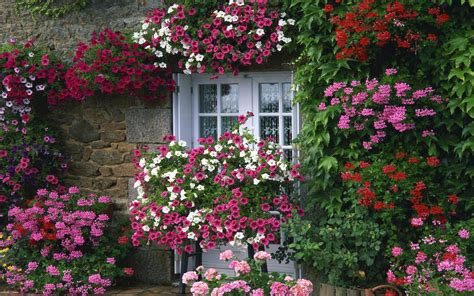 country cottage wallpaper collection cottage wallpaper photos the