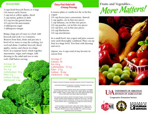 nutrition brochure template 5 best agenda templates