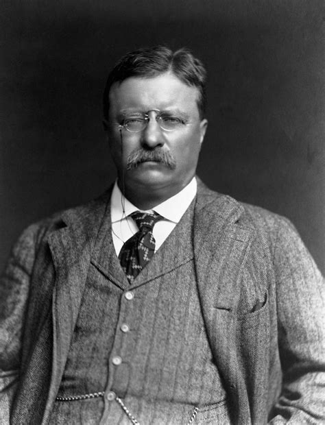 presidency of theodore roosevelt wikipedia the free theodore roosevelt pictures theodore roosevelt history com