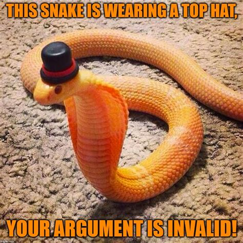 Snake Meme - your argument is invalid imgflip