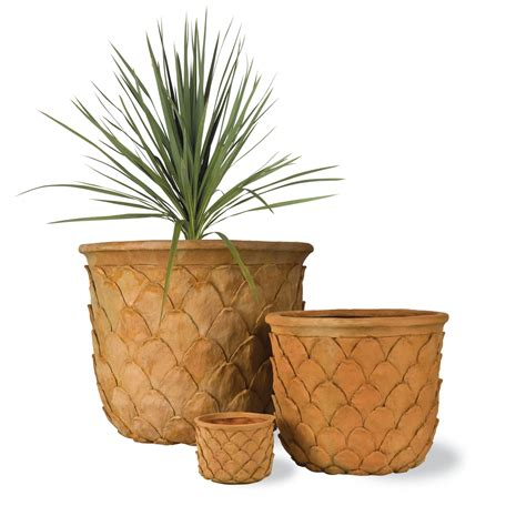 Pineapple Planter by Pineapple Planter