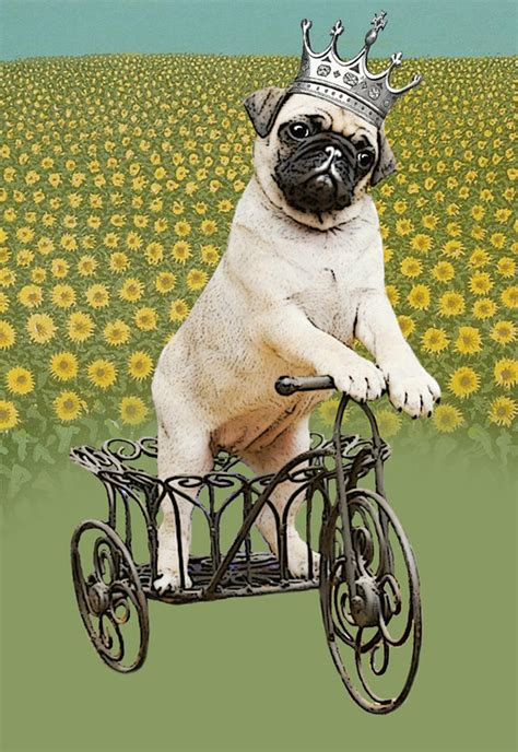 pug pictures to buy popular pug pictures buy cheap pug pictures lots from china pug pictures suppliers on