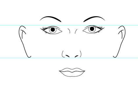 draw nose illustrator modeling the human face in illustrator tuts design