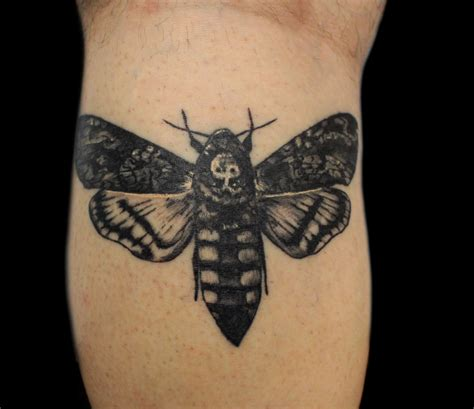death moth tattoo moth black and grey