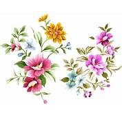 PSD Layered  Of Hand Drawn Flowers Flower