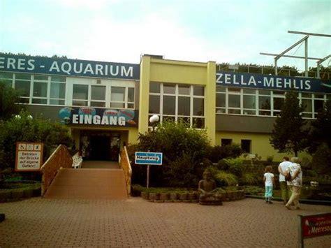 wohnungen in zella mehlis erlebnispark meeresaquarium zella mehlis aktuelle 2018