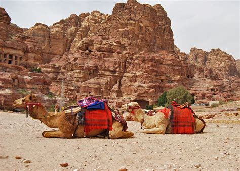 mamta mule photos a walking tour of petra the ancient rock city of