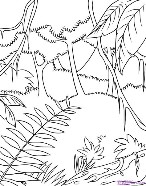 Easy Rainforest Coloring Pages by Unique Rainforest Animal Coloring Pages Design Printable