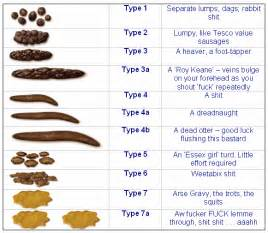 bowel movement colors bowel movement chart with explanation gnewsinfo