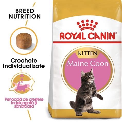 Royal Canin Maine Coon 10 Kg 424 by Royal Canin Maine Coon Kitten 10 Kg Hrna Pisici