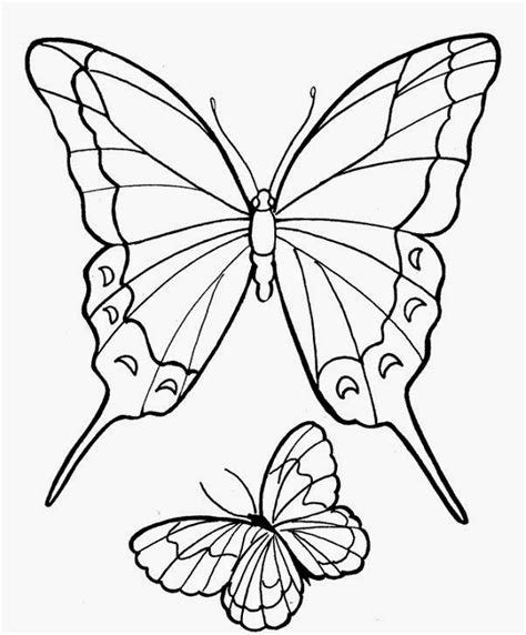 gambar tato motif kupu kupu gambar mewarnai kupu kupu motif unik bahasapendidikan