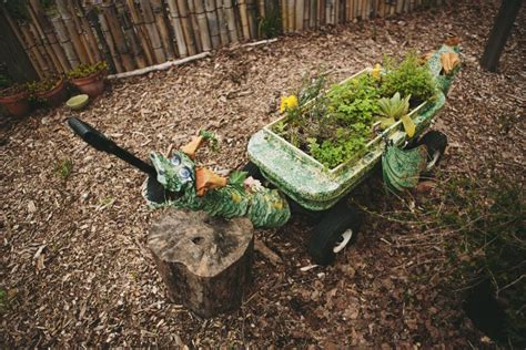 crazy cool container gardens hgtv