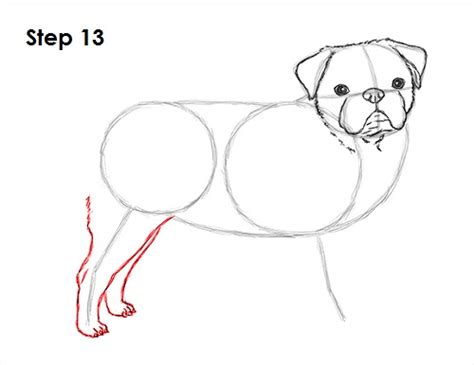 pug drawing step by step how to draw a pug