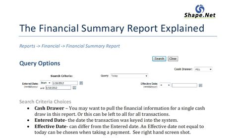financial summary report template shape net client service the financial summary report