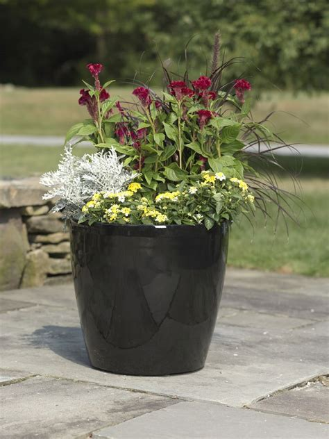 Planters Extraordinary Large Flower Pots Extra Large Large Outdoor Planters
