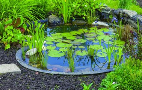 Small Garden Decoration Tips by Ideas For Garden Ponds Large And Small Pics Tips Regarding