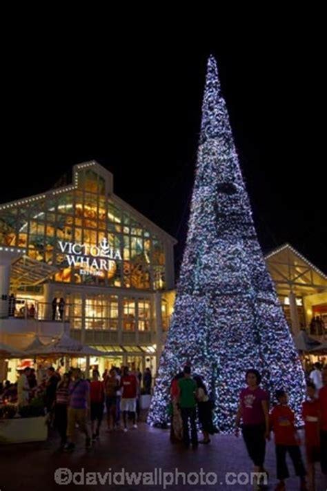 christmas tree and tourists victoria wharf victoria and