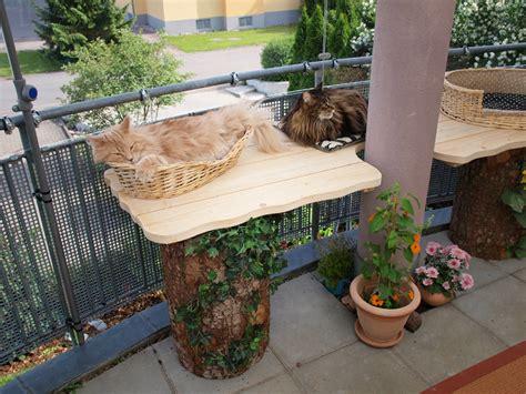treppe für katzen chestha idee balkon gel 228 nder