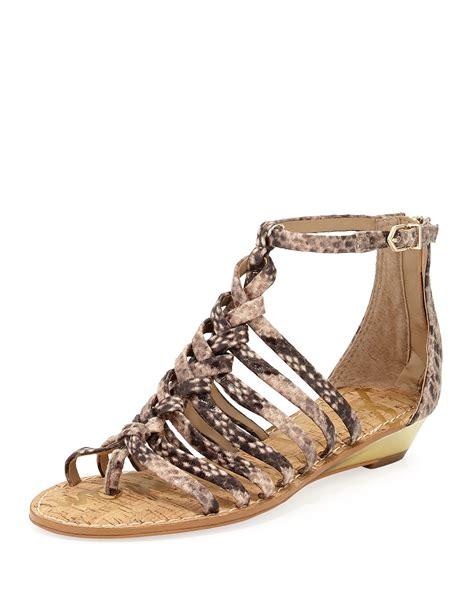 sam edelman sandals sam edelman dakota snakeprint gladiator sandal in beige