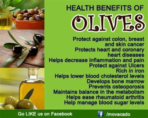 Olive For Health And by Health Benefits Of Olives Olive Juice