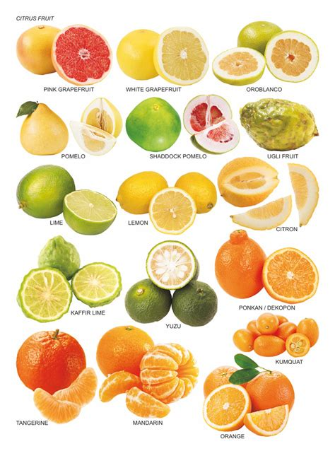 fruit vegetables definition list of citrus fruits what are healthy fruits to eat