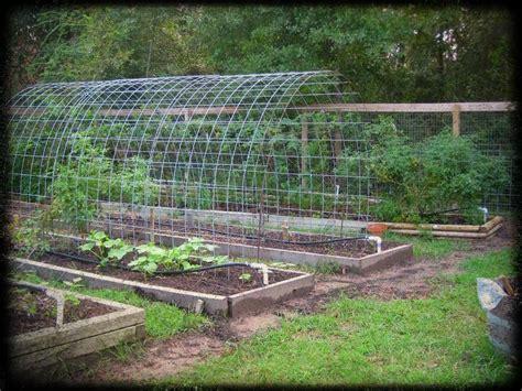 Vegetable Garden Structures Vegetable Garden Trellis Ideas Space Smart Trellis Arch