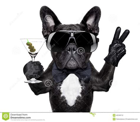 peace puppies peace cocktail stock photo image of fashion 40248112