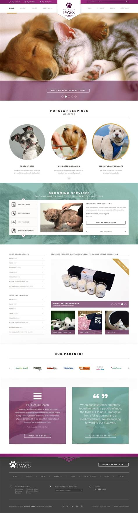 Best 20 Website Template Ideas On Pinterest Homepage Design Business Website Templates And Competition Website Template