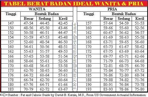 Timbangan Berat Badan Yang Ideal berat badan ideal pria wanita diet sehat distributor