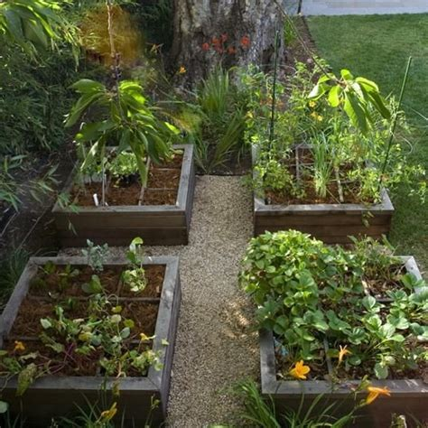 beautiful raised garden beds 20 raised bed garden designs and beautiful backyard