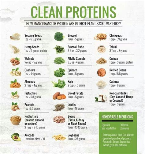 power vegan meals high protein plant based recipes for a stronger healthier you books clean proteins clean protein and